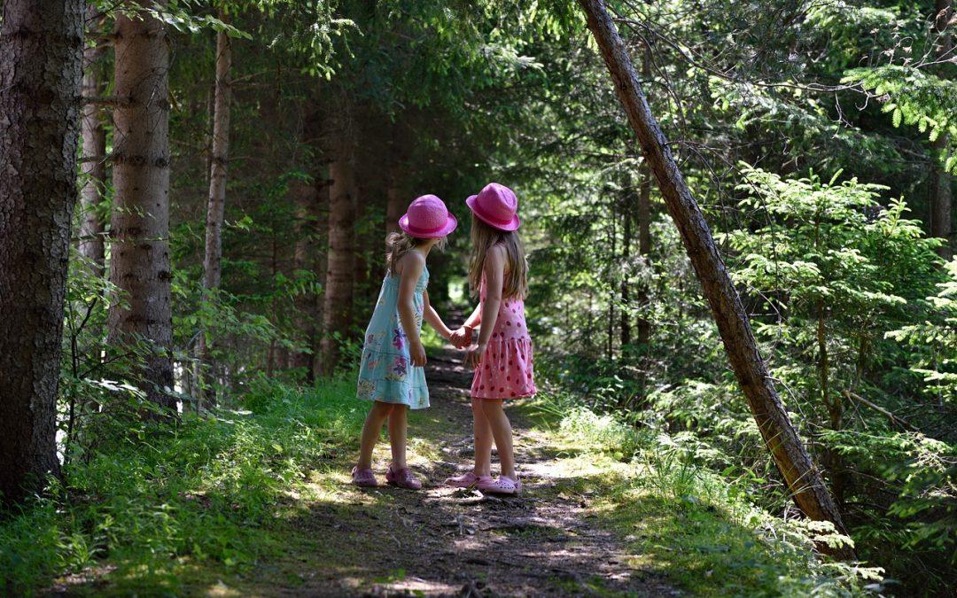 Consejos para evitar incendios forestales. (I)