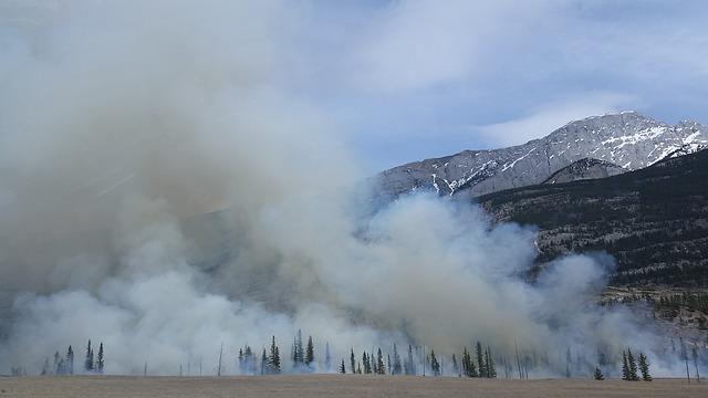 Prevención de incendios forestales.