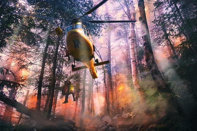 Qué hacer ante un incendio forestal. (III)